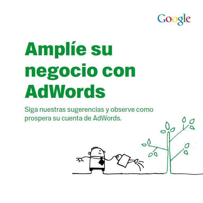 Libro amplie su negocio con Adwords